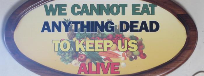 Vegan in Jamaica - Featured